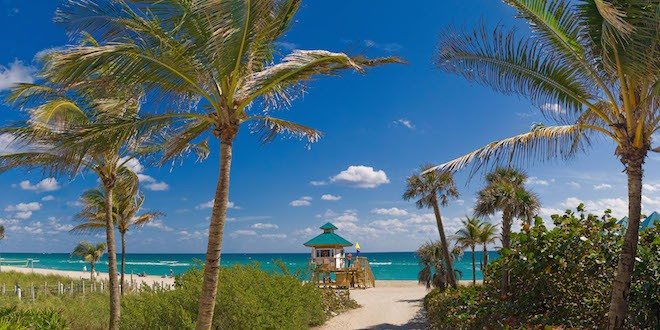 Photo: Sunny Isles City Beach with Palm Trees