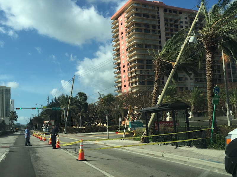 A utility pole leans against a tree, damage sustained from Hurricane Irma.