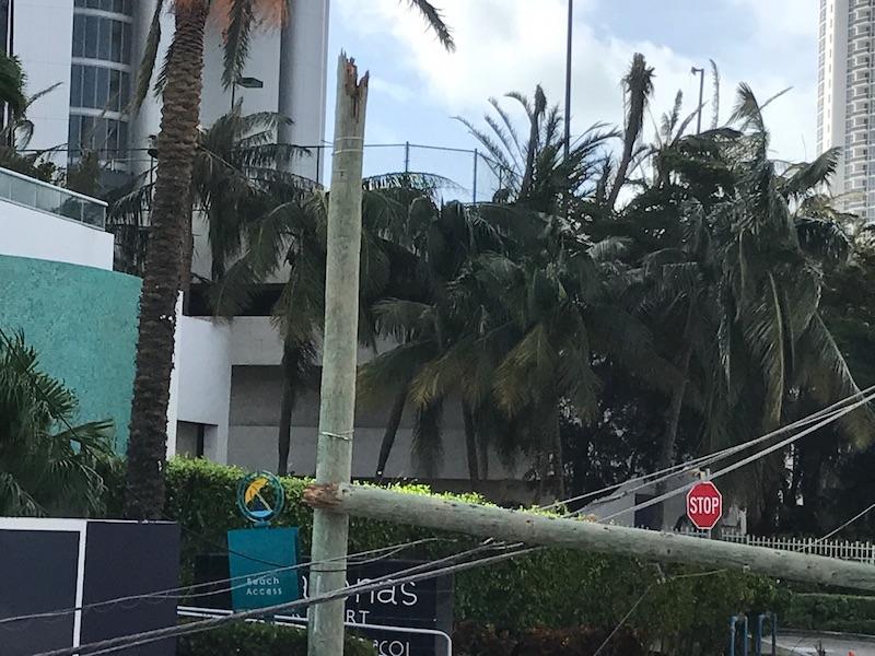 A power line post, broken and fallen, lays near Marenas Beach Resort.