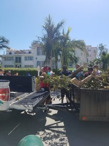 volunteers cleaning up debris following hurricane Irma.