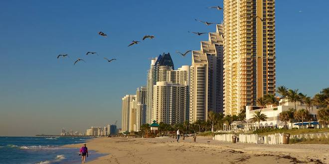 Beach coastline and skyline on a clear day. Birds flying in the sky.