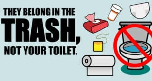 They belong in the trash, not your toilet. Toilet with items surrounding it that should not be flushed, such as wipes and diapers.