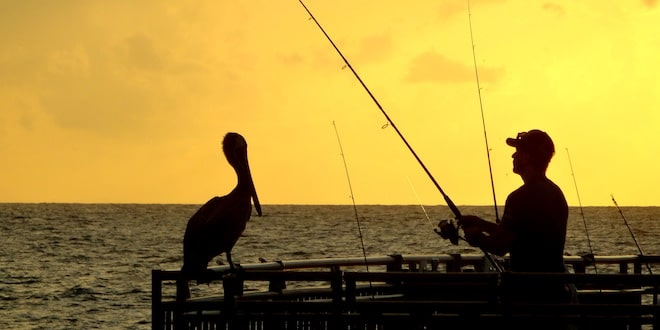 Man fishes from pier at sunset as pelican perches on rail.