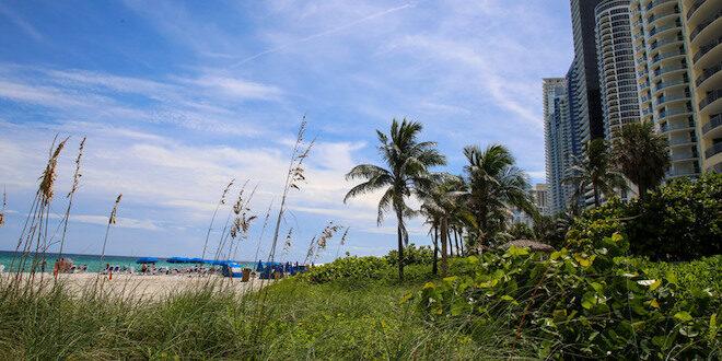 Sand dune on the beach.