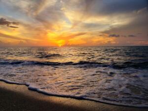 """Cover Backdrop - Beatrix Csinger """"Good Morning, Sun"""""""