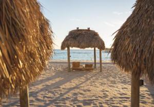 """April - Matias Porporato """"Beach Daze"""""""