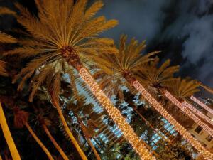 "December - Beatrix Csinger ""Magical Lights"""