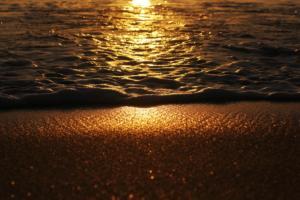 "Beatrix Csinger ""Golden Waves"""